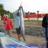The Bay Island of Utila wins the Honduras Fishing Tournament – 2013