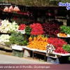 Honduras: Vegetable exports will amount to $40 million dollars