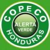 COPECO Green Alert in Effect