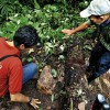 """Some Honduran archaeologists doubt National Geographic find is legendary 'Lost City' """"Ciudad Blanca"""""""