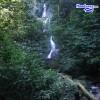 Enjoying the Rain Forest at Pico Bonito Honduras – La Ceiba, Atlantida