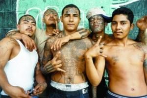 honduras mara 13 gang
