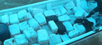 350 Kilos of Cocaine Seized