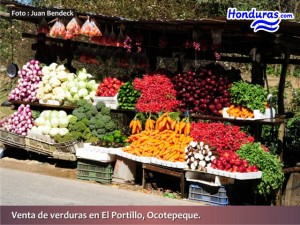 Honduras Exports Fruits and Vegetables