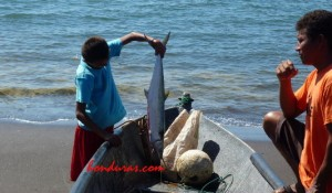 Honduras Awarded for Fishing Practices