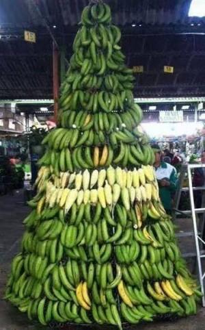 Honduras Banana and Agricultural Exports