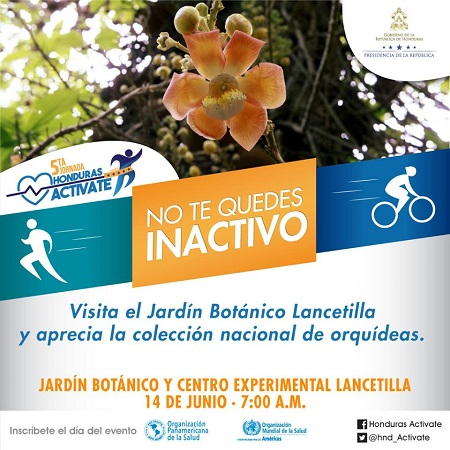 Honduras Activate - Lancetilla