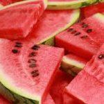 Honduras Melon and Watermelon Exports Fall 6.2%