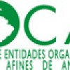XXIX Congress of COCAL in San Pedro Sula