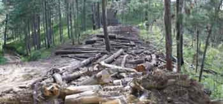 Honduras Hosts Debate on Climate Change