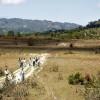 UNESCO Grants Green Light for Copan Airfield