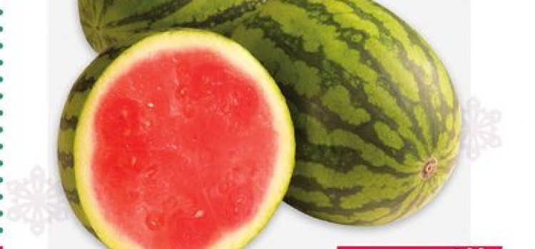 Honduras 2015 Harvest for Melons, Squash, Okra Keeping Exporters Happy