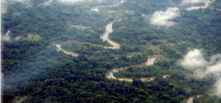 "Honduras President Announces Plans to Explore Jungle in Search of the ""Lost City"" – Ciudad Blanca"