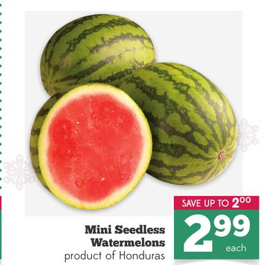 Honduras Seedless Watermelon